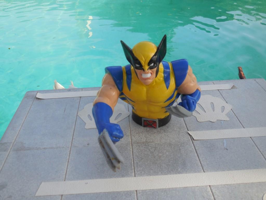 Wolverine6