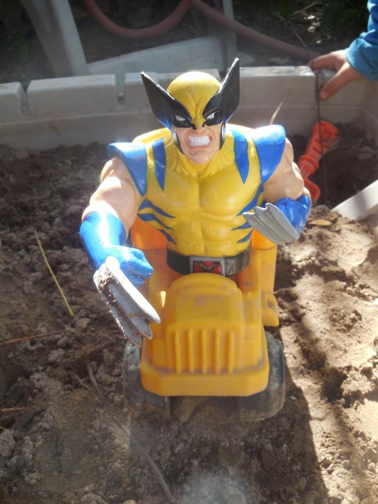Wolverine9a