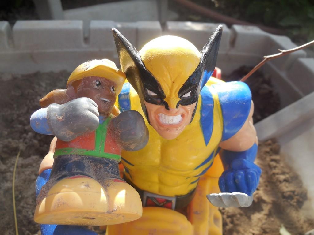 Wolverine9e