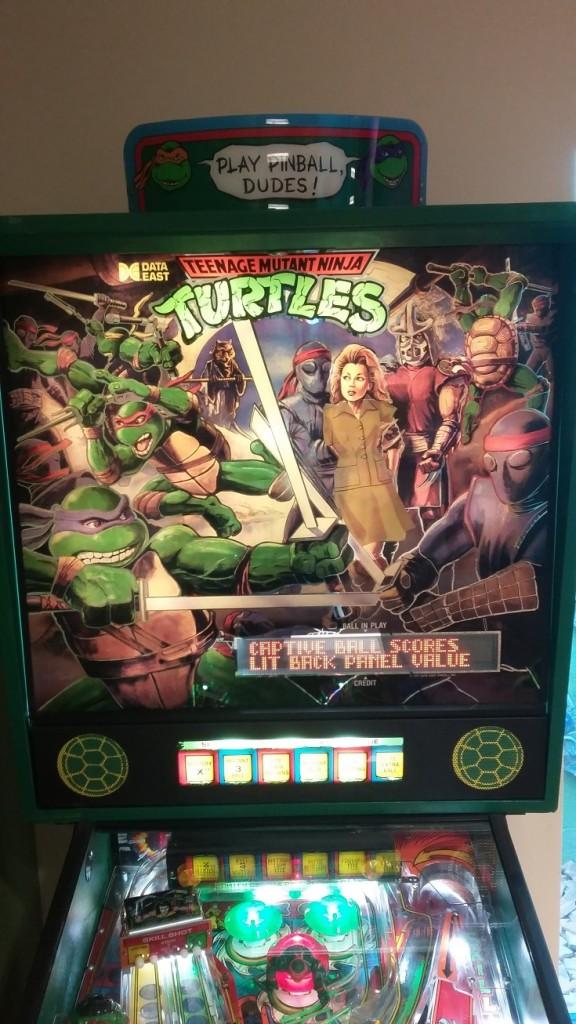 Modest Turtles